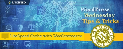 LSCache + WooCommerce For a Super Speedy Shop!